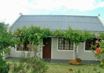 Bietou (named after a prominent indigenous flowering shrub) is a charming holiday cottage