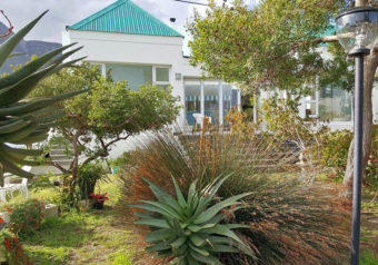Enclosed backyard with a natural garden